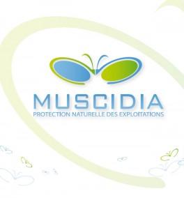muscidia